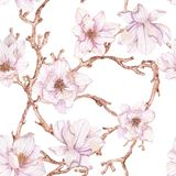 Watercolor branches of magnolia,seamless pattern Stock Images