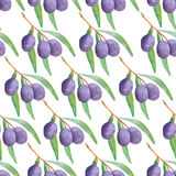 Watercolor branches of olives seamless pattern. Vector illustration Stock Image
