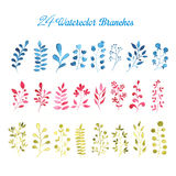 24 Watercolor Branches. In three colors Stock Photography