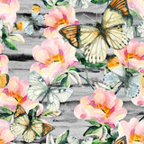 Watercolor briar flowers and butterfly seamless pattern. Dog Rose branches in vintage style. Watercolor briar flowers and butterfly seamless pattern. Dog Rose Stock Images