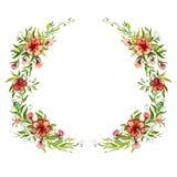 Watercolor bright beautiful flower wreath Stock Photos