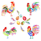 Watercolor bright festive roosters. New year symbol. Beautiful s Stock Image