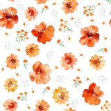 Watercolor bright midsummer orange flowers seamless pattern on white background, camomile, St. John`s wort, nasturtium. Seamless pattern can be used for Royalty Free Stock Photography