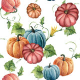 Watercolor bright pumpkin seamless pattern. Hand painted pumpkin ornament with flower, leaves and branch isolated on vector illustration