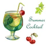 Delicious cocktail with cherry vector illustration