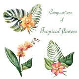 Watercolor bright summer illustration with tropical flowers royalty free illustration