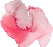 Watercolor brush. On white background Stock Images