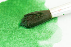 Watercolor brush atop green paint Stock Photography