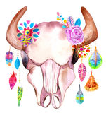 Watercolor bull skull with flowers and feathers Stock Image