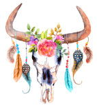 Watercolor bull skull with flowers and feathers. Over white Royalty Free Stock Photography