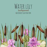 Watercolor bulrush and pink lotus background, greeting card template, artistic design background. Hand painted on a blue background Royalty Free Stock Images
