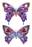 Watercolor butterflies design Stock Photos
