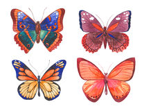 Watercolor butterflies illustration Royalty Free Stock Images