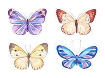 Watercolor butterflies illustration Stock Photos
