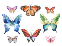 Watercolor butterflies illustration Royalty Free Stock Photography