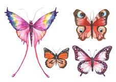 Watercolor butterflies illustration Stock Photo