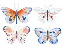 Watercolor butterflies illustration Royalty Free Stock Image