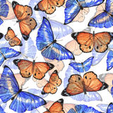 Watercolor butterflies pattern. Colorful hand drawn seamless pattern with watercolor blue and orange butterflies on the white background Stock Illustration