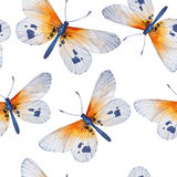 Watercolor butterflies, seamless floral vintage Stock Photography
