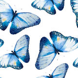 Watercolor butterflies, seamless floral vintage Royalty Free Stock Images