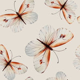Watercolor butterflies, seamless floral vintage pattern Royalty Free Stock Image