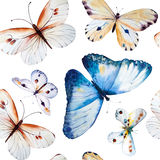 Watercolor butterflies, seamless floral vintage pattern Stock Images