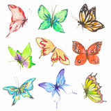 Watercolor butterflies set. Colorful butterflies on white bcakground. Beautiful fragile creatures for decoration Royalty Free Stock Photography