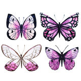 Watercolor butterflies vector Royalty Free Stock Photo