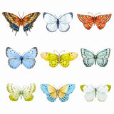 Watercolor butterflies vector set Stock Photo