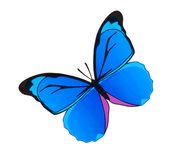 Watercolor butterfly Stock Images