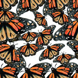 Watercolor Butterfly background. Illustration image Stock Image