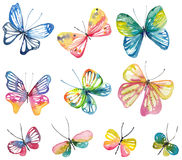 Watercolor butterfly collection Stock Photo