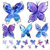 Watercolor butterfly elements in blue Stock Photography