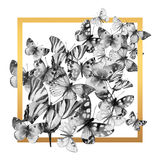 Watercolor butterfly frame. Stock Photography