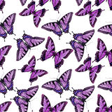 Watercolor butterfly pattern Royalty Free Stock Images