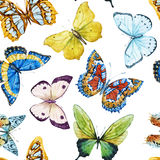Watercolor butterfly pattern Stock Photos