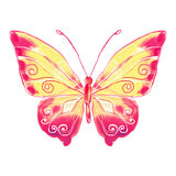 Watercolor butterfly red-yellow Royalty Free Stock Photos