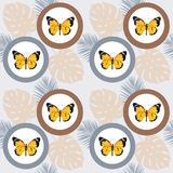 Watercolor butterfly seamless pattern on blue background. Geometric design with circle Royalty Free Stock Photography