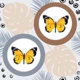 Watercolor butterfly seamless pattern on blue background. Geometric design with circle Stock Photo