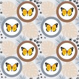 Watercolor butterfly seamless pattern on blue background. Geometric design with circle Royalty Free Stock Image