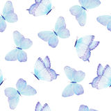 Watercolor butterfly seamless pattern hand drawn Royalty Free Stock Image
