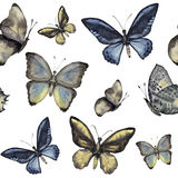 Watercolor butterfly seamless pattern. Hand painted insect ornament isolated on white background. Illustration for Royalty Free Stock Images