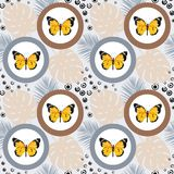 Watercolor butterfly seamless pattern on white background. Watercolor butterfly seamless pattern on bwhite background. Geometric design with circle Royalty Free Stock Images