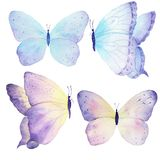 Watercolor butterfly set hand drawn painting. Can be used for greeting cards,wedding invitations,logo,T-shirts,bags,posters,printi Royalty Free Stock Photos