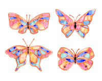 Watercolor butterfly summer. Pattern on white background Royalty Free Stock Photography
