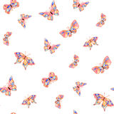 Watercolor butterfly summer spring. On white background Royalty Free Stock Photo