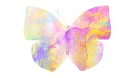 watercolor butterfly. tropical insect for design. isolated on white background royalty free stock photo