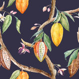 Watercolor cacao pattern. Tropical seamless pattern with watercolor cacao fruits and leaves royalty free illustration