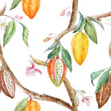 Watercolor cacao pattern. Tropical seamless pattern with watercolor cacao fruits and leaves stock illustration