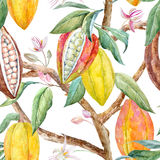 Watercolor cacao pattern. Tropical seamless pattern with watercolor cacao fruits and leaves vector illustration